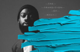 The Transition of Mali